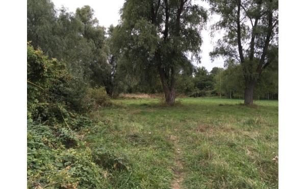 участок на берегу реки Самара ж/м Одинковка